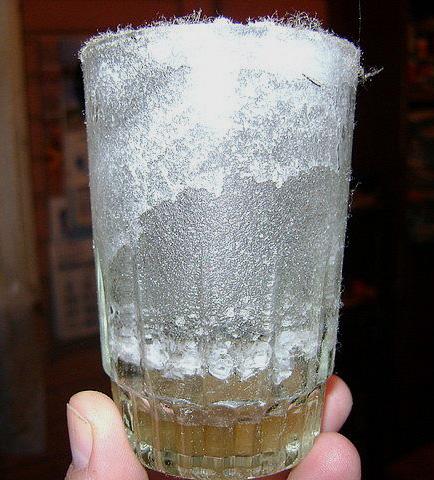 Protección con vaso de vinagre con sal... (2/4)