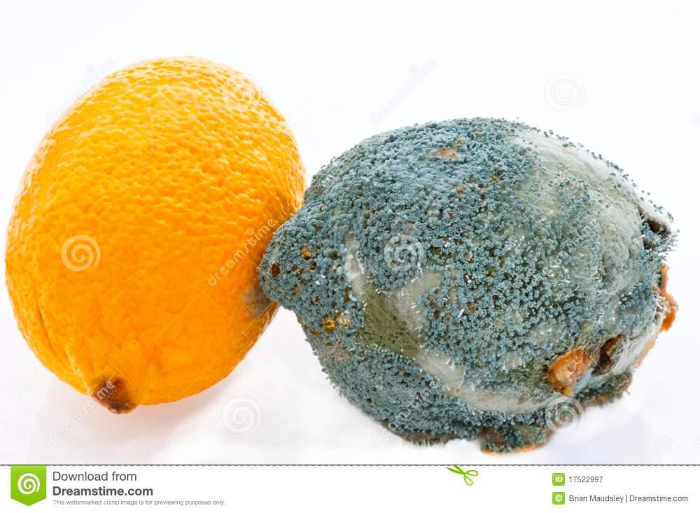 El limón para limpiar malas vibraciones...  (4/5)